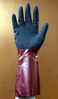 Gloves protect hands from exposure to hazardous chemicals.