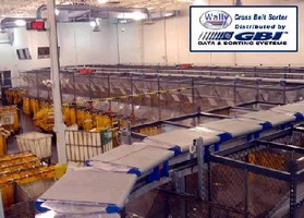 Cross Belt Sorter handles items weighing up to 100 lb.