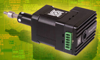 Stepper Motor offers diverse configuration options.