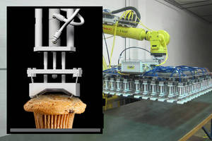 Robotic End-of-Arm Tooling handles various baked goods.