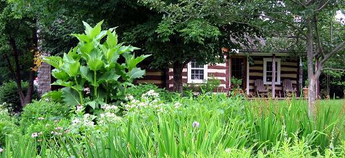 Habitat garden by John Magee Front Royal Va.