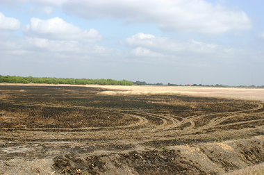 Photo of drought-affected land in Texas