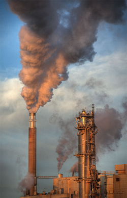 Photo of paper factory
