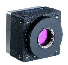 Inspection Cameras provide IEEE-1394 standard output.