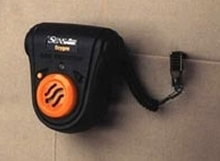 Gas Detectors come with standard alarms.