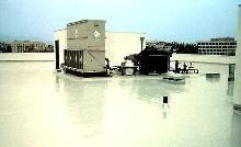 Polyurethane Coating provides waterproof surface.