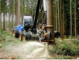 SABIC's 3D-Formed LEXAN(TM) Sheet Increases Visibility, Safety, Comfort, and Performance of Rottne Forestry Vehicle Glazing
