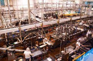 Increasing Cheese Production for a Dairy Manufacturer