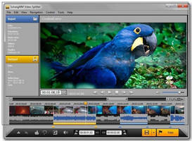 Lossless Video Splitting Software offers frame-accurate editing.