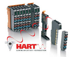 HART Modules feature 2 inputs and 2 outputs.