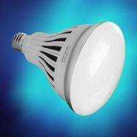 Dimmable LED Floodlight replaces incandescent bulbs.