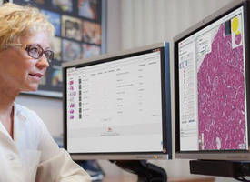 Digital Pathology Software improves pre-clinical testing efficacy.