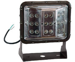 LED Wall Pack Light offers optional color output.