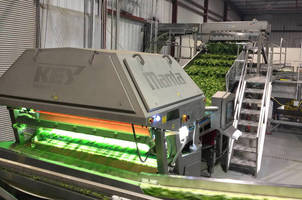 Vegetable Sorting System has integrated, high-capacity design.