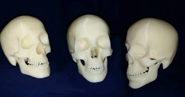 In Case you Missed it, We Used our 3D Printer to Make Skulls for Halloween!