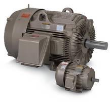 Crusher Duty Motors range from 5-350 hp.