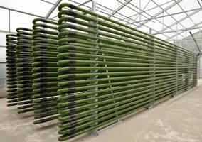 B-Scada Provides IoT Solution to Optimize Algae Cultivation in Colorado