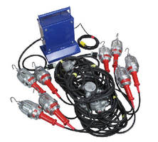 Explosion Proof String Lights use 100 W incandescent bulbs.