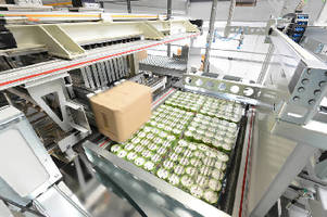 Palletizing System handles mixed cases.
