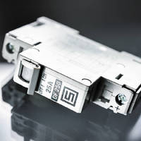 Miniature Circuit Breakers deliver supplementary protection.