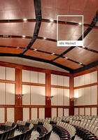 Ceiling Panels come in full spectrum of hues.