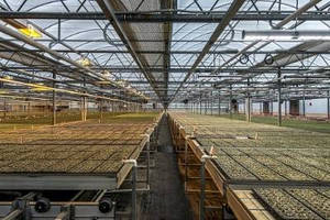 Fluence Bioengineering Achieves Breakthrough in Horticulture Lighting Efficacy According to University Studies
