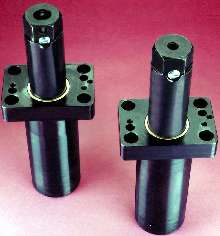 Gas Springs suit transfer and progressive die applications.