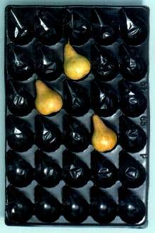PVC Pear Trays protect fruit during transport.