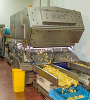 Optyx Sorters Maximize Product Quality at Tayto