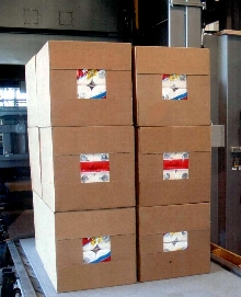 Discharge Conveyors use modular plastic belting.