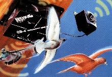 Bird Repeller offers remote satellite speaker option.