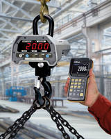 Alliance/CAS Caston II Plus Crane Scale features 320 x 240 TFT LCD display.