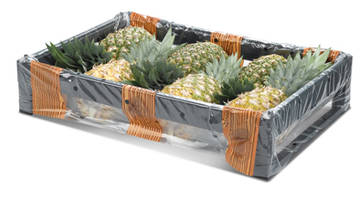 EcoPack Starts Production of Pineapple Crates in Costa Rica and California