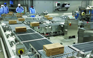 New Stainless Steel Constructed Conveyors Deliver Maximum Throughput of 42 Total Cases per Minute