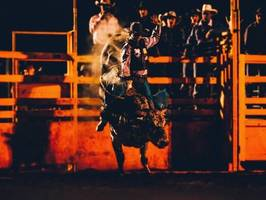 Access Fixtures Offers LED Horse Arena Lighting for Casual Riding Environments