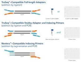 New Custom NGS Adapters Provide Easy and Flexible Customized Adapter Solution to Scientists