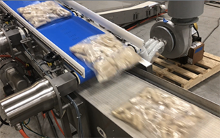 Multi-Conveyor Introduces Bag Inject 2:1 Vertical Merge Stainless Steel Conveyor
