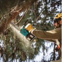 New XCU08 and XCU09 Chainsaws Operate at Lower Noise Level
