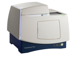 New and Improved ImageXpress Pico System Features Increase Resolution for Phenotypic Imaging