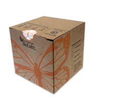 New Recyclable Packaging Maintains Proper Shipping Temperature Conditions