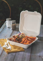 New Plates and Containers Made from Renewable and Post-consumer Recycled Resources