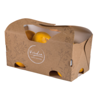 New Paperboard Packaging Comes with Carrying Handles