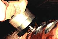 Welding End Prep Tool removes tube stubs from header.