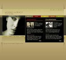 CSS Templates offer professional appearance.