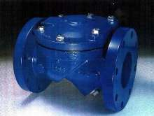 Check Valve targets water and wastewater industries.