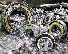 Custom Steel Bearings operate in corrosive environments.