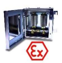 ATEX-Certified Enclosures suit hazardous environments.