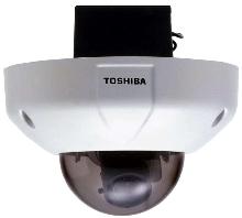 Dome Camera has vandal-resistant design.