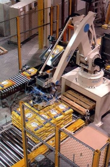 Robotic Palletizers stack bags of rice.