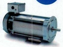 Permanent DC Motors have all-stainless steel construction.